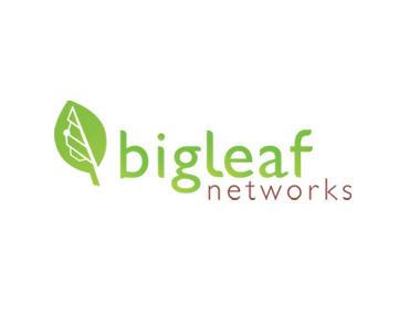 Big-Leaf-1